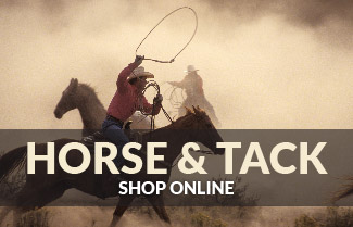 Keddies Horse & Track Image